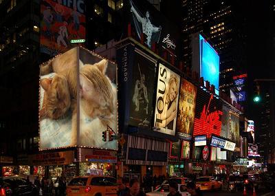 【PhotoFunia 作品例:タイムズスクエアにちゃむが・・・】