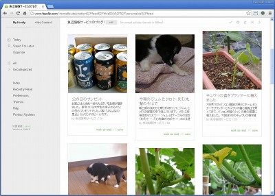 Feedly の Cards View