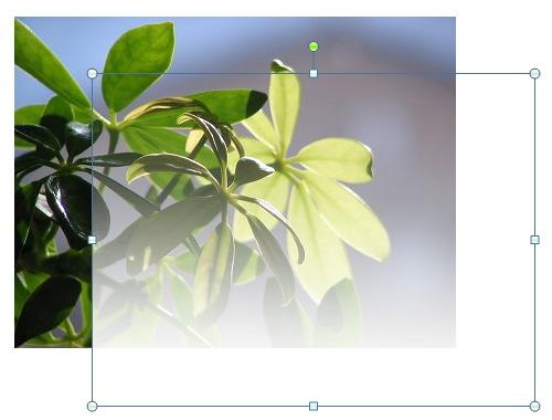 Word で写真に透明(透過)グラデーションをかける方法