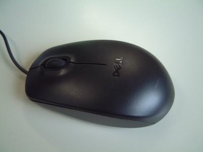 軽過ぎて私には使いづらい Dell のマウス - 富士フィルム FinePix 4700Z