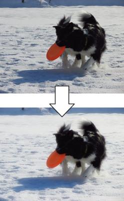 PhotoScape のブルーム効果