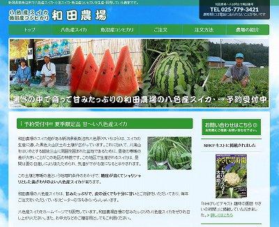 八色産スイカ直売 - 新潟県南魚沼市の和田農場