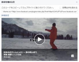 Facebook の動画をサイトに埋め込む方法